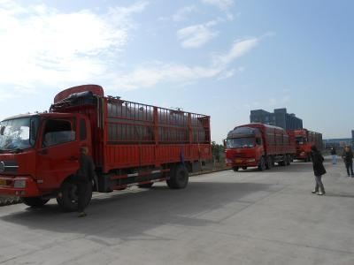 工程现场运输